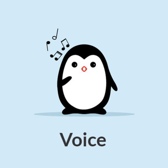 Voice 7 Notes Music School